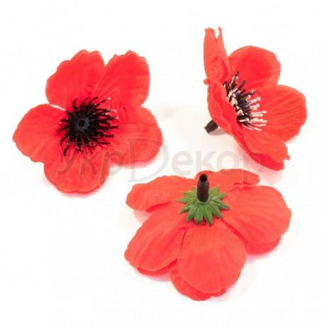 Головка цветка дикого мака НН