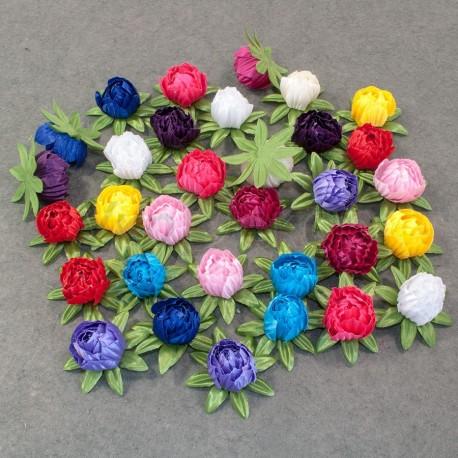 Бутон цветка магнолии