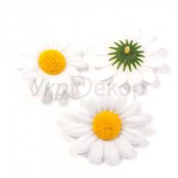 Цветок ромашки большая серединка